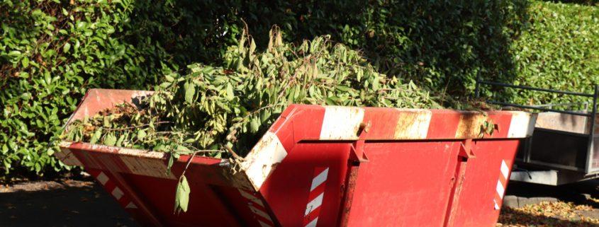 garden-clearance